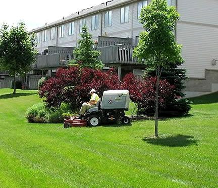 GREEN T LANDSCAPING website - Kitchener-Waterloo, ON